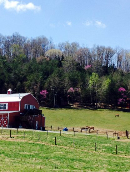 Tandy Farm Sparta, Tennessee